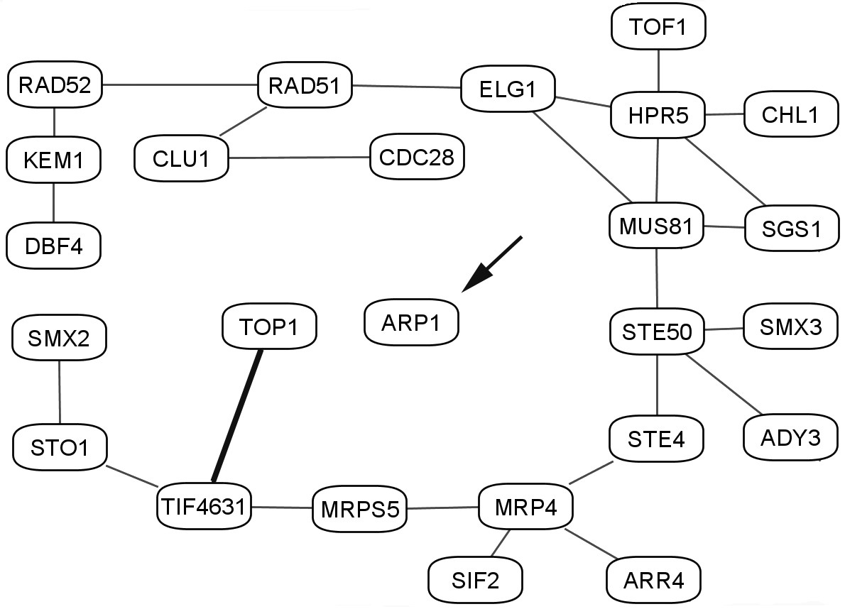 http://static-content.springer.com/image/art%3A10.1186%2F1471-2105-7-355/MediaObjects/12859_2006_Article_1094_Fig9_HTML.jpg