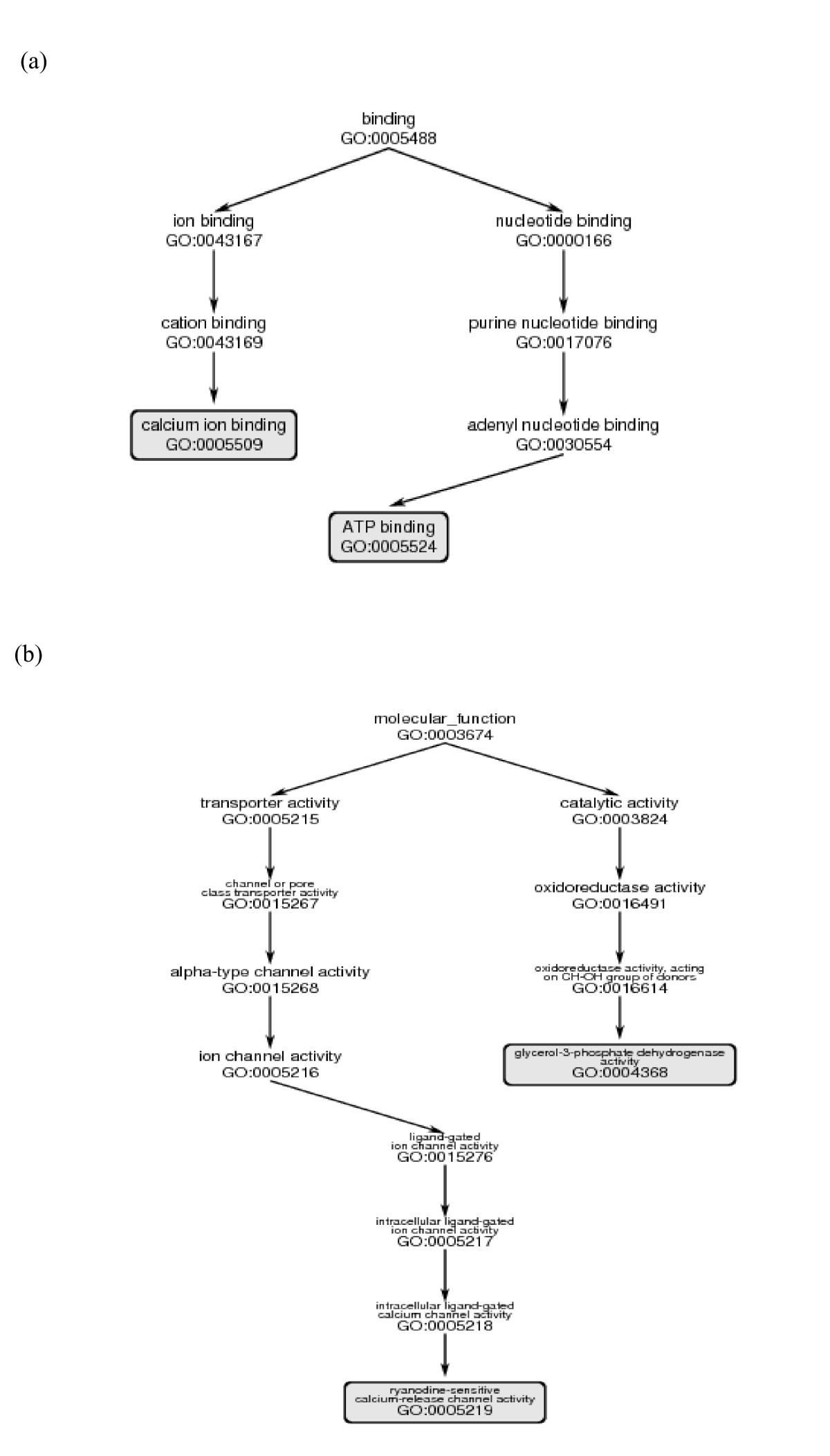 http://static-content.springer.com/image/art%3A10.1186%2F1471-2105-8-294/MediaObjects/12859_2007_Article_1666_Fig6_HTML.jpg