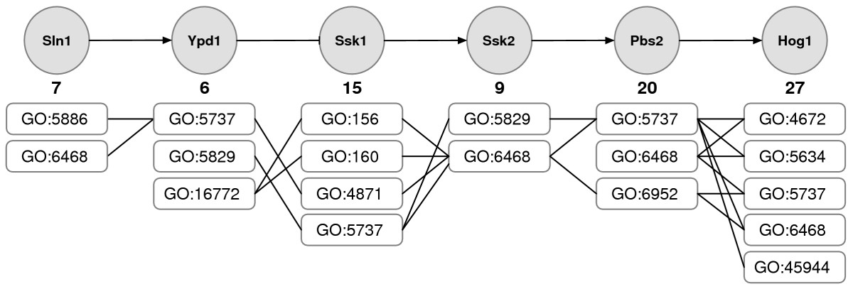 http://static-content.springer.com/image/art%3A10.1186%2F1471-2105-8-335/MediaObjects/12859_2007_Article_1707_Fig3_HTML.jpg