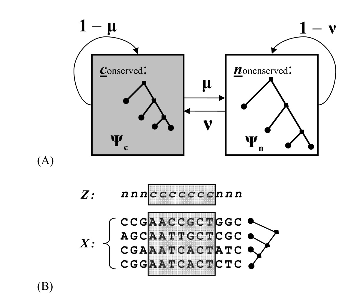 http://static-content.springer.com/image/art%3A10.1186%2F1471-2105-8-374/MediaObjects/12859_2007_Article_1746_Fig1_HTML.jpg