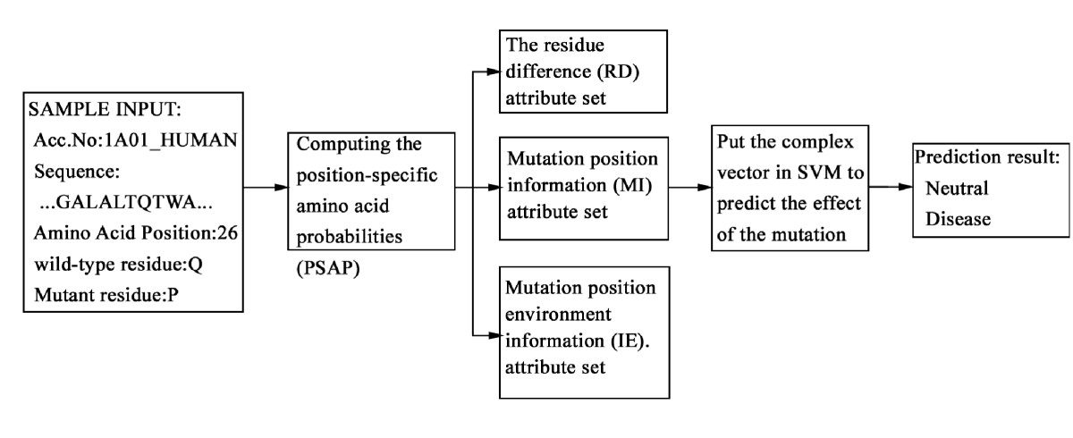 http://static-content.springer.com/image/art%3A10.1186%2F1471-2105-8-450/MediaObjects/12859_2007_Article_1822_Fig1_HTML.jpg