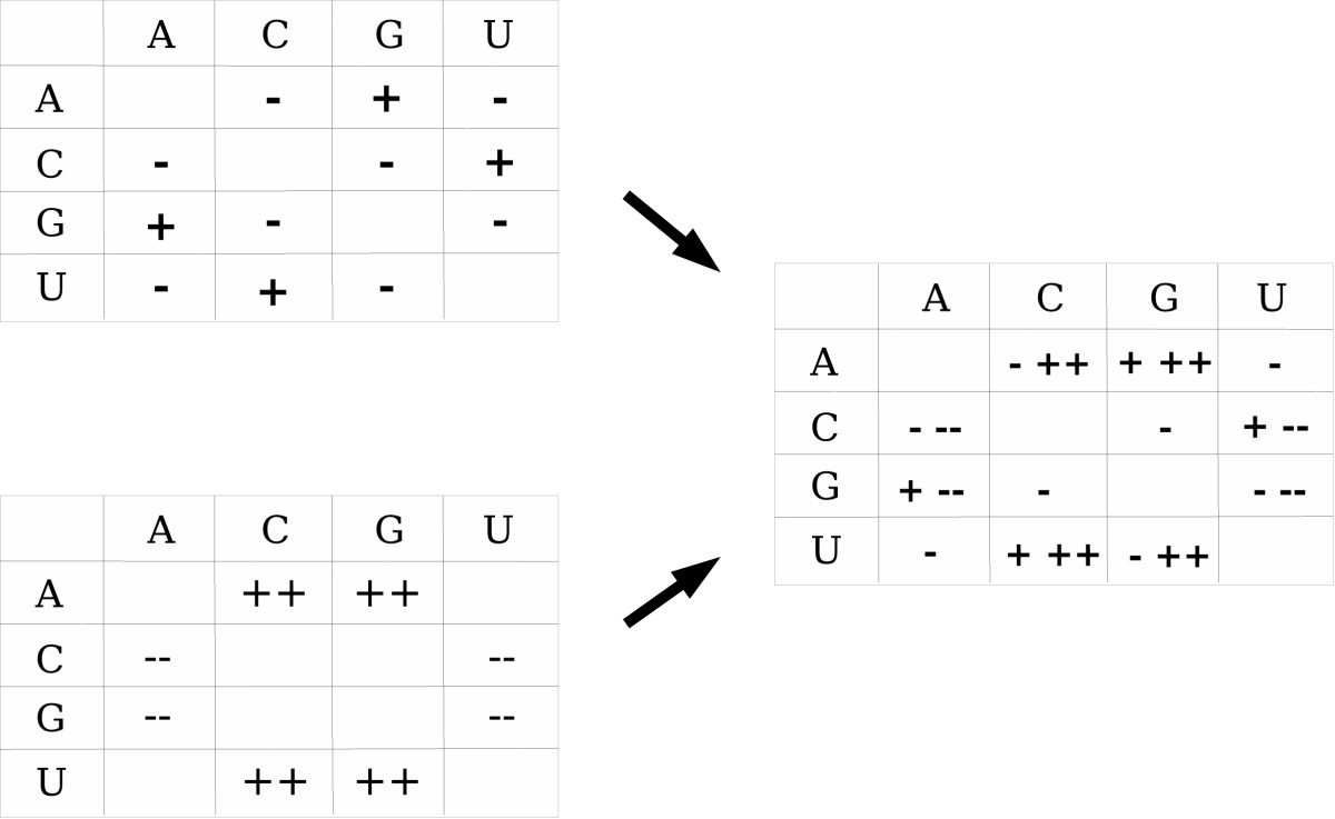 http://static-content.springer.com/image/art%3A10.1186%2F1471-2105-8-464/MediaObjects/12859_2007_Article_1836_Fig2_HTML.jpg