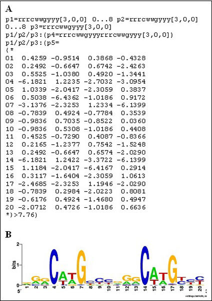 http://static-content.springer.com/image/art%3A10.1186%2F1471-2105-8-S1-S20/MediaObjects/12859_2007_Article_1880_Fig1_HTML.jpg