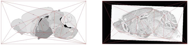 http://static-content.springer.com/image/art%3A10.1186%2F1471-2105-8-S10-S5/MediaObjects/12859_2007_Article_1982_Fig4_HTML.jpg