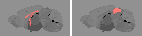 http://static-content.springer.com/image/art%3A10.1186%2F1471-2105-8-S10-S5/MediaObjects/12859_2007_Article_1982_Fig9_HTML.jpg