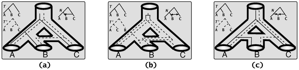 http://static-content.springer.com/image/art%3A10.1186%2F1471-2105-9-322/MediaObjects/12859_2008_Article_2307_Fig1_HTML.jpg