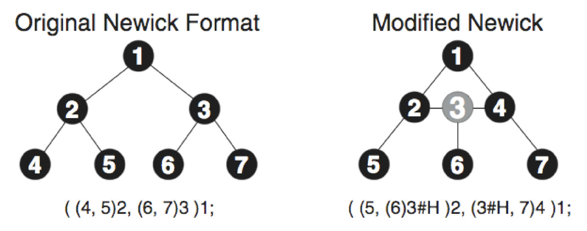 http://static-content.springer.com/image/art%3A10.1186%2F1471-2105-9-322/MediaObjects/12859_2008_Article_2307_Fig4_HTML.jpg