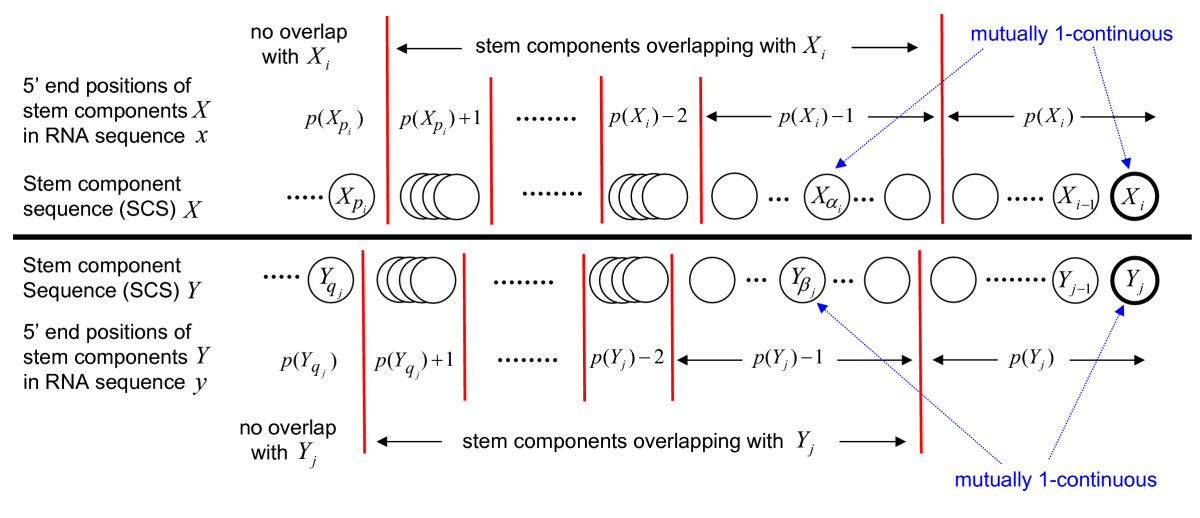 http://static-content.springer.com/image/art%3A10.1186%2F1471-2105-9-33/MediaObjects/12859_2007_Article_2018_Fig2_HTML.jpg