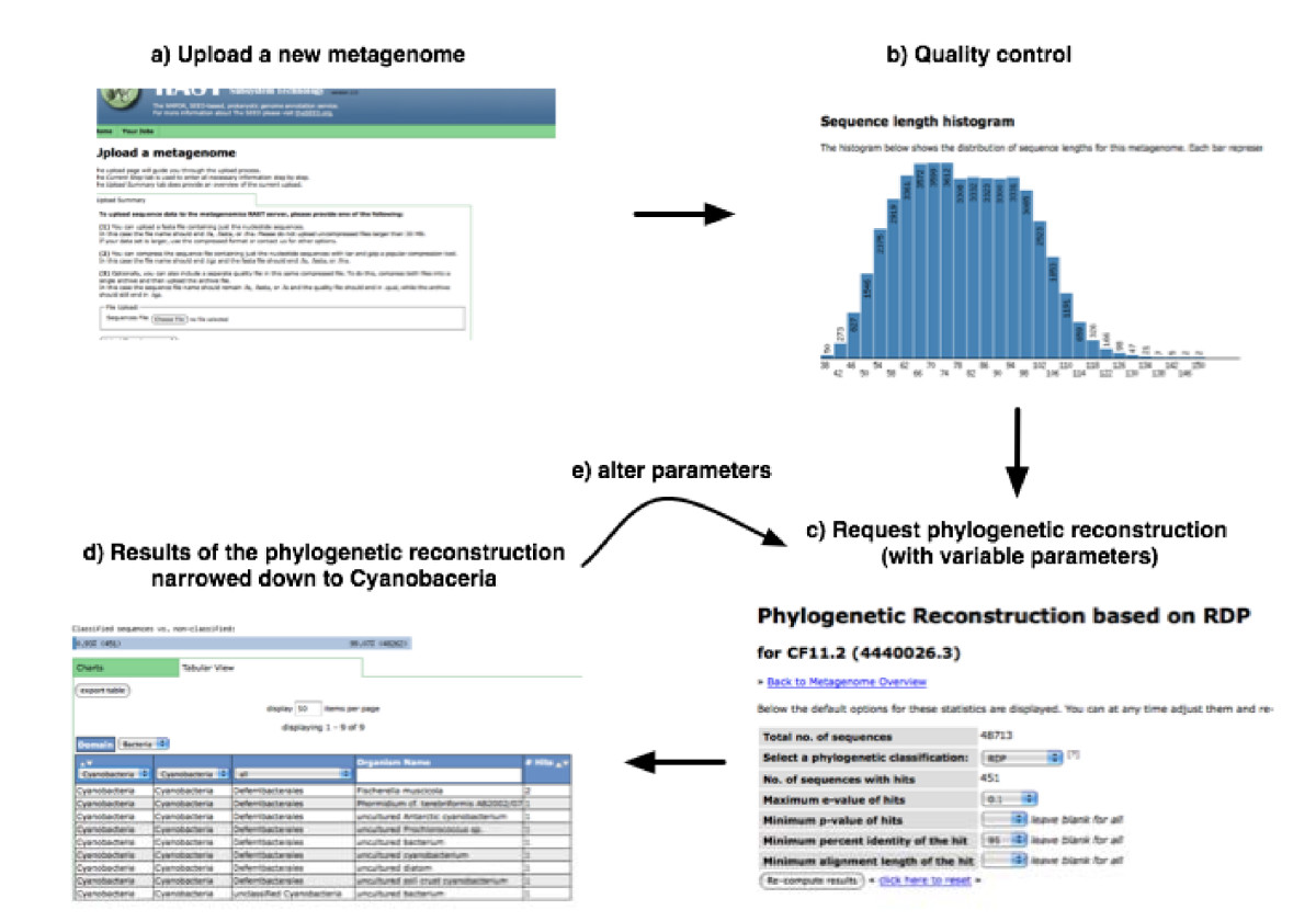 http://static-content.springer.com/image/art%3A10.1186%2F1471-2105-9-386/MediaObjects/12859_2008_Article_2371_Fig1_HTML.jpg