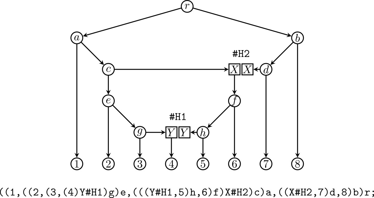 http://static-content.springer.com/image/art%3A10.1186%2F1471-2105-9-532/MediaObjects/12859_2008_Article_2517_Fig2_HTML.jpg