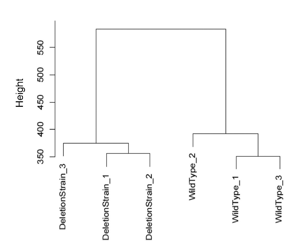 http://static-content.springer.com/image/art%3A10.1186%2F1471-2105-9-542/MediaObjects/12859_2008_Article_2527_Fig9_HTML.jpg