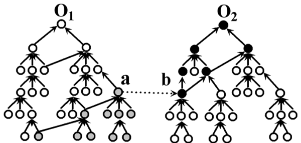 http://static-content.springer.com/image/art%3A10.1186%2F1471-2105-9-S1-S6/MediaObjects/12859_2008_Article_2550_Fig4_HTML.jpg