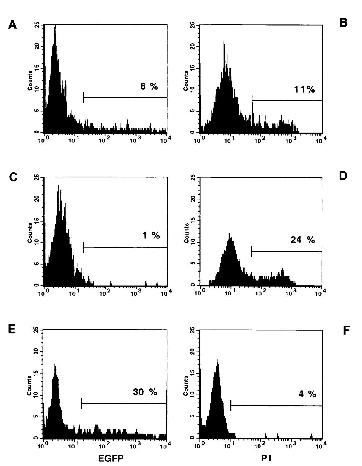 http://static-content.springer.com/image/art%3A10.1186%2F1471-2121-1-4/MediaObjects/12860_2000_Article_4_Fig2_HTML.jpg