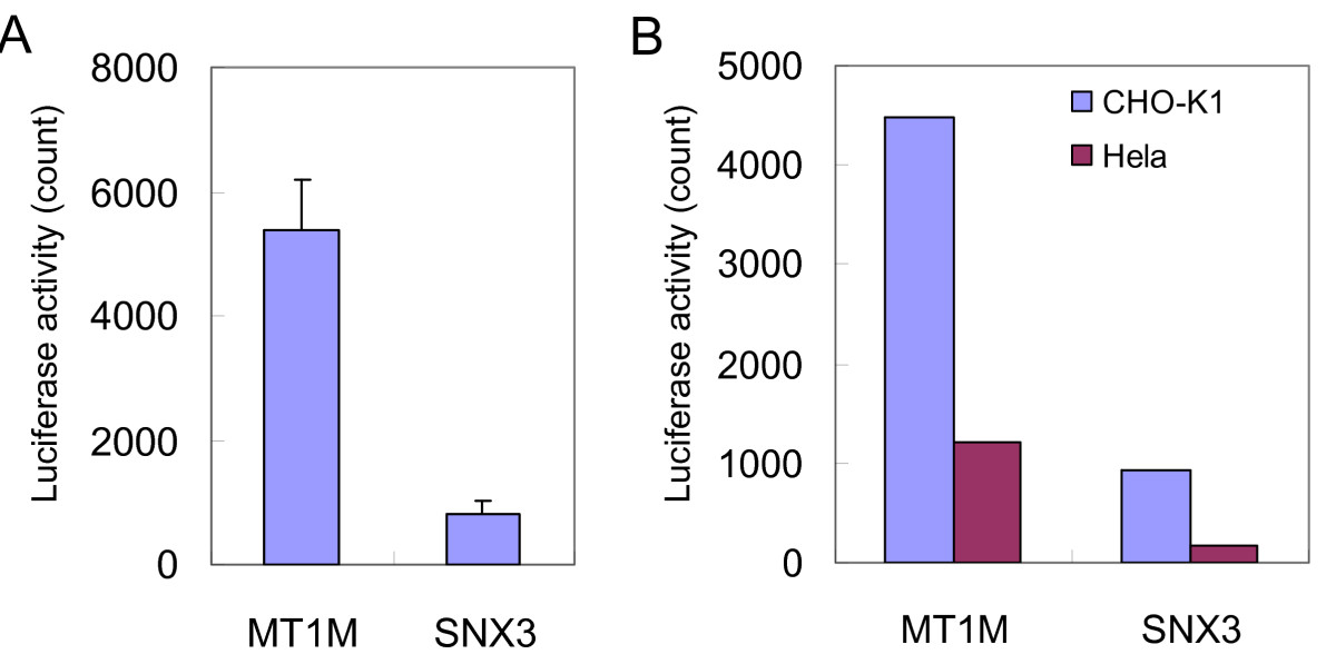 http://static-content.springer.com/image/art%3A10.1186%2F1471-2121-10-69/MediaObjects/12860_2008_Article_418_Fig3_HTML.jpg