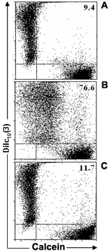 http://static-content.springer.com/image/art%3A10.1186%2F1471-2121-11-3/MediaObjects/12860_2009_Article_448_Fig1_HTML.jpg
