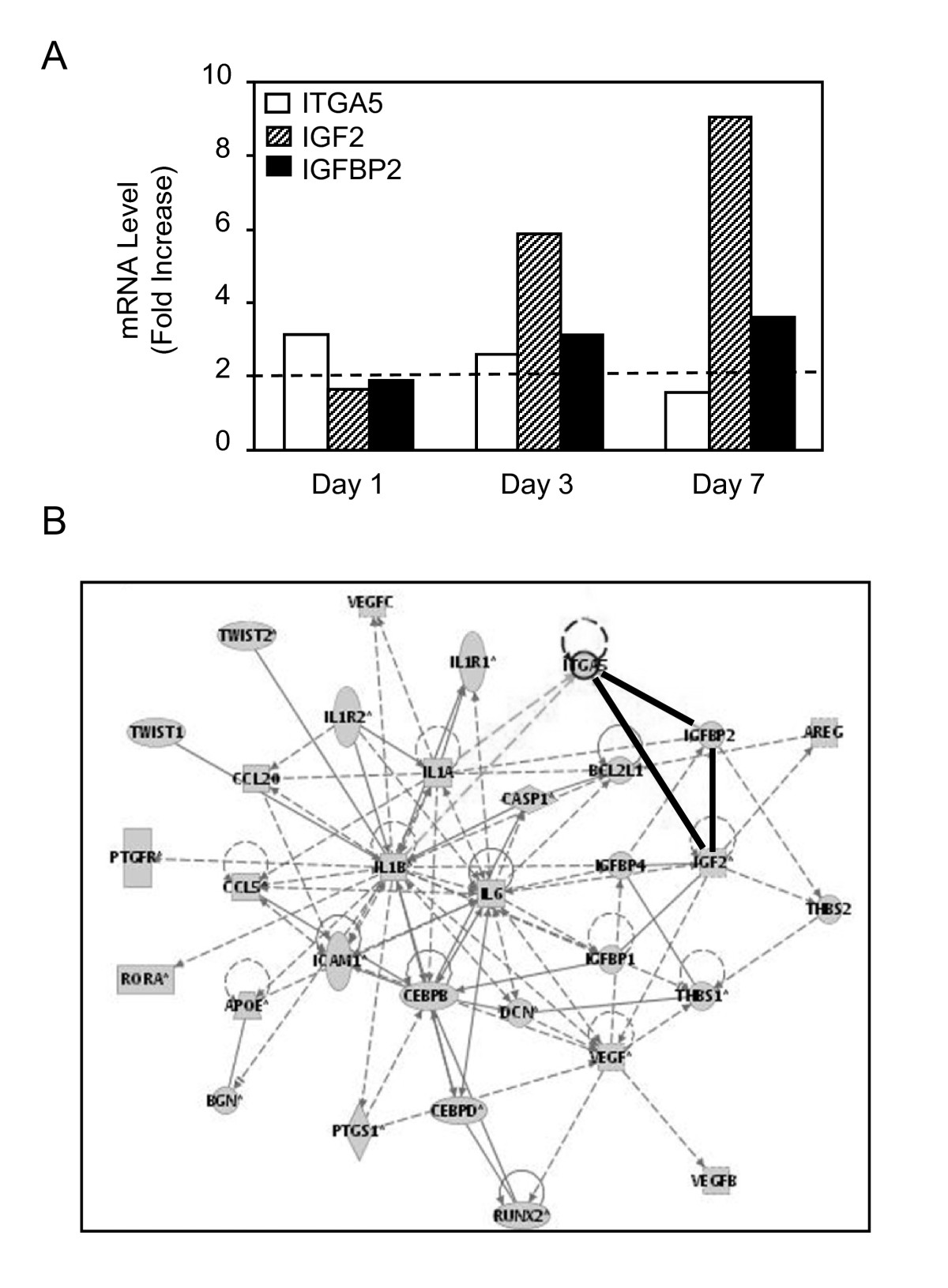 http://static-content.springer.com/image/art%3A10.1186%2F1471-2121-11-44/MediaObjects/12860_2009_Article_489_Fig1_HTML.jpg