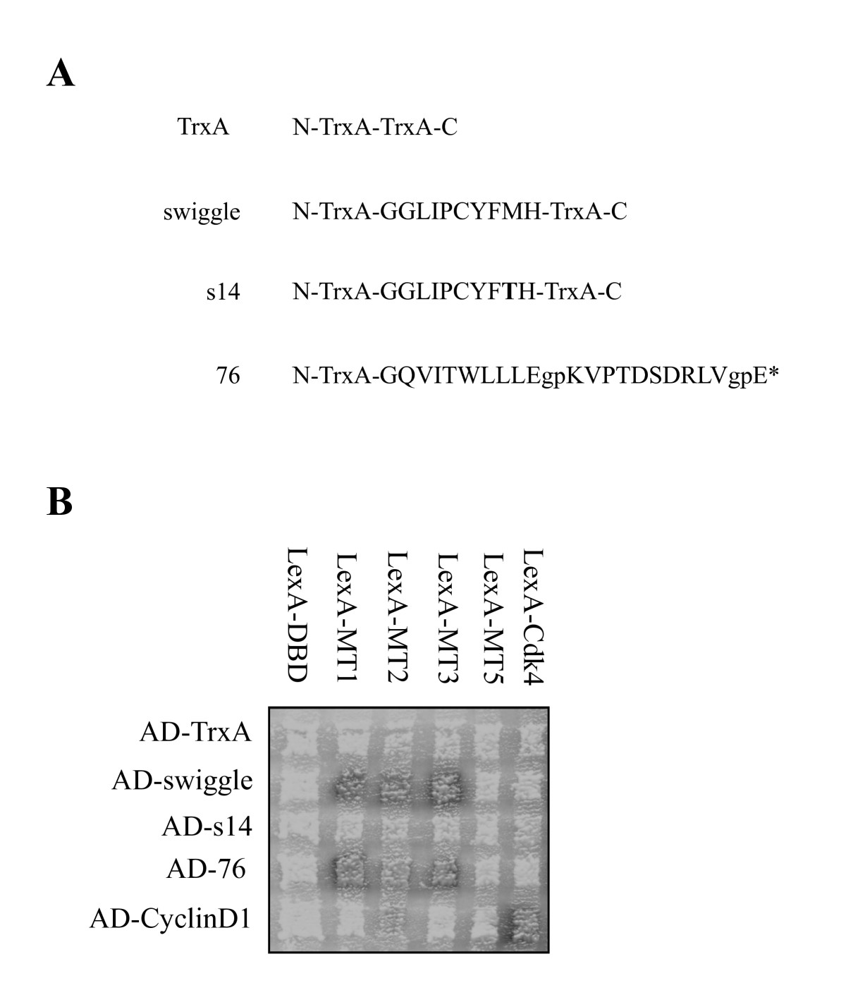 http://static-content.springer.com/image/art%3A10.1186%2F1471-2121-11-58/MediaObjects/12860_2009_Article_503_Fig1_HTML.jpg