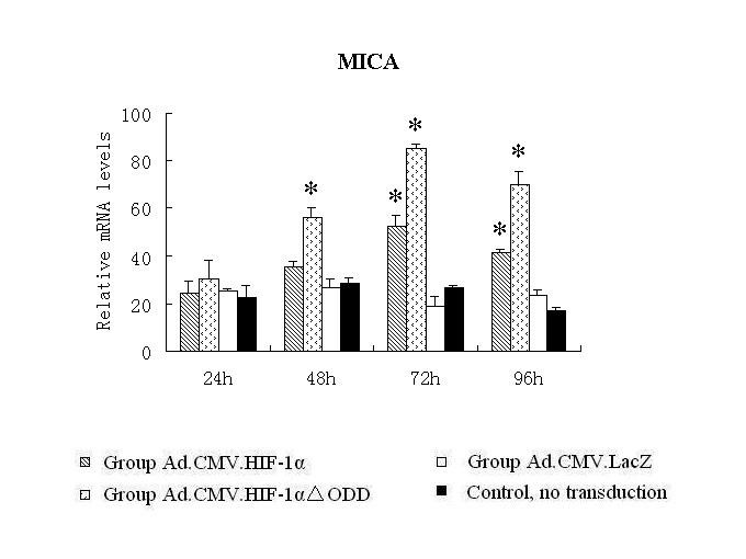http://static-content.springer.com/image/art%3A10.1186%2F1471-2121-11-91/MediaObjects/12860_2009_Article_536_Fig3_HTML.jpg