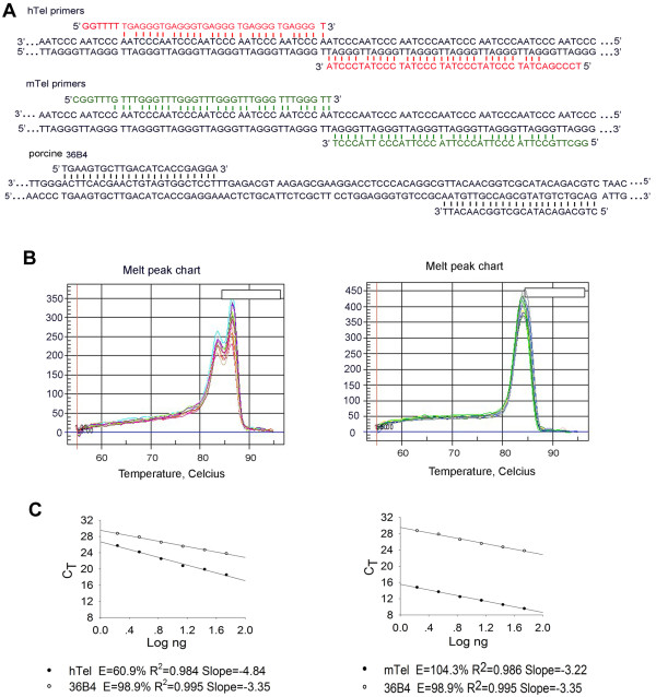 http://static-content.springer.com/image/art%3A10.1186%2F1471-2121-13-36/MediaObjects/12860_2012_Article_640_Fig4_HTML.jpg