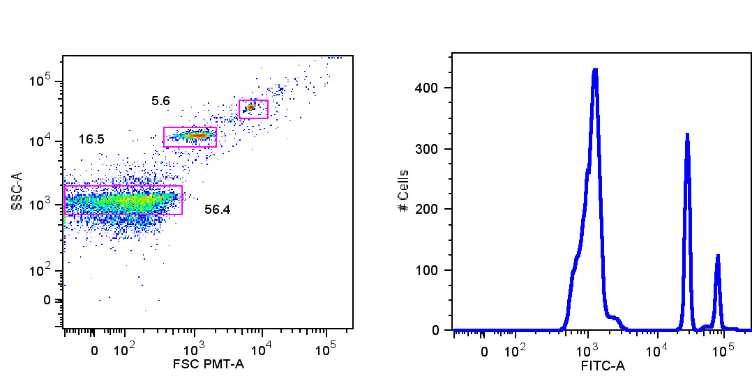 http://static-content.springer.com/image/art%3A10.1186%2F1471-2121-14-23/MediaObjects/12860_2012_Article_660_Fig1_HTML.jpg
