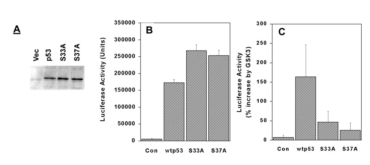 http://static-content.springer.com/image/art%3A10.1186%2F1471-2121-2-12/MediaObjects/12860_2001_Article_16_Fig3_HTML.jpg