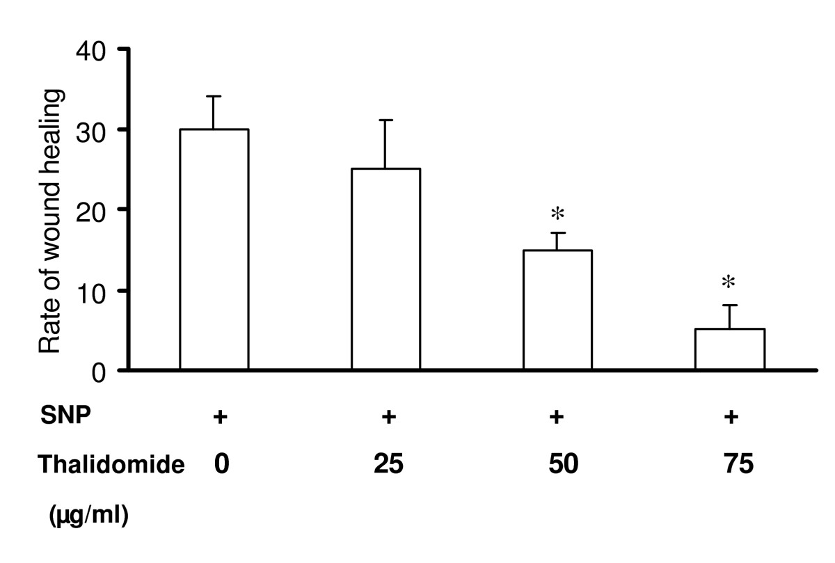 http://static-content.springer.com/image/art%3A10.1186%2F1471-2121-7-17/MediaObjects/12860_2005_Article_190_Fig11_HTML.jpg