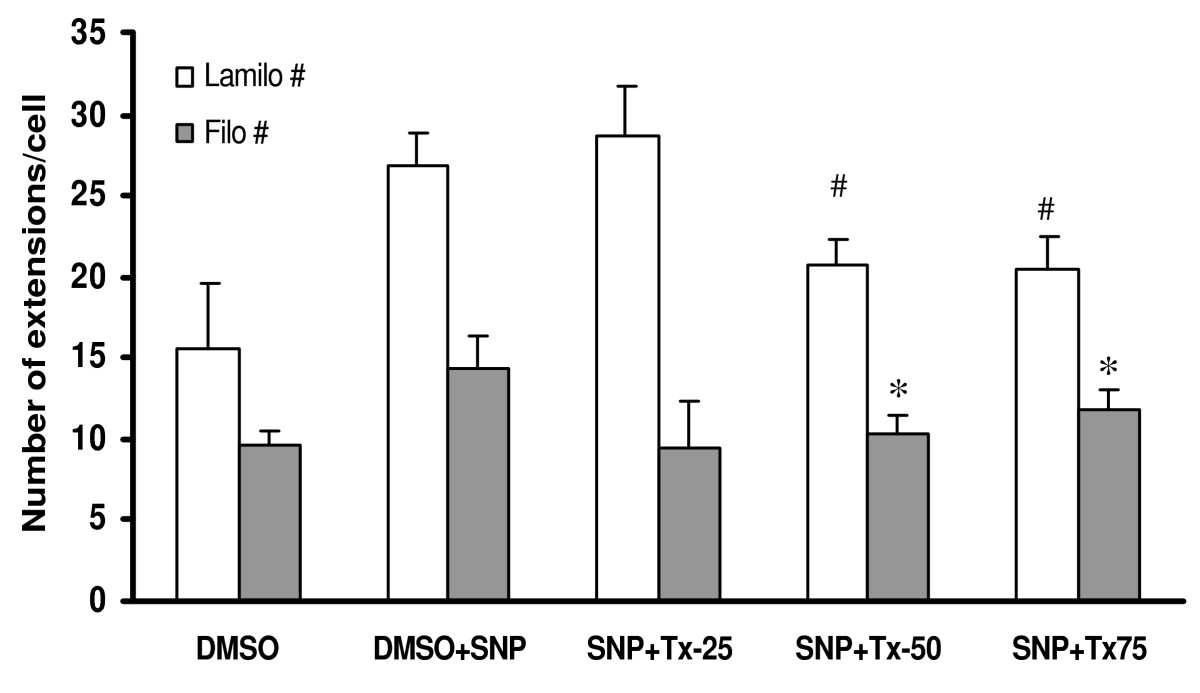 http://static-content.springer.com/image/art%3A10.1186%2F1471-2121-7-17/MediaObjects/12860_2005_Article_190_Fig13_HTML.jpg