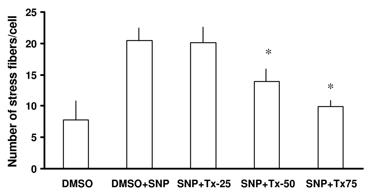 http://static-content.springer.com/image/art%3A10.1186%2F1471-2121-7-17/MediaObjects/12860_2005_Article_190_Fig14_HTML.jpg