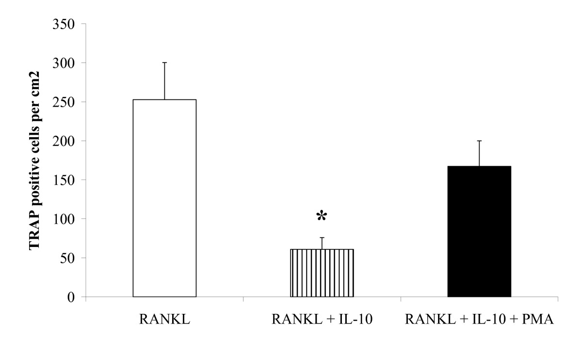 http://static-content.springer.com/image/art%3A10.1186%2F1471-2121-8-4/MediaObjects/12860_2006_Article_4_Fig4_HTML.jpg