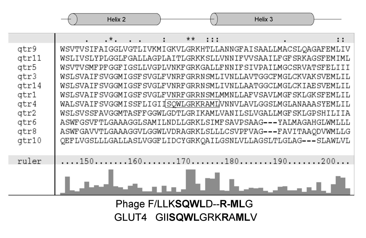 http://static-content.springer.com/image/art%3A10.1186%2F1471-2121-9-25/MediaObjects/12860_2007_Article_303_Fig1_HTML.jpg