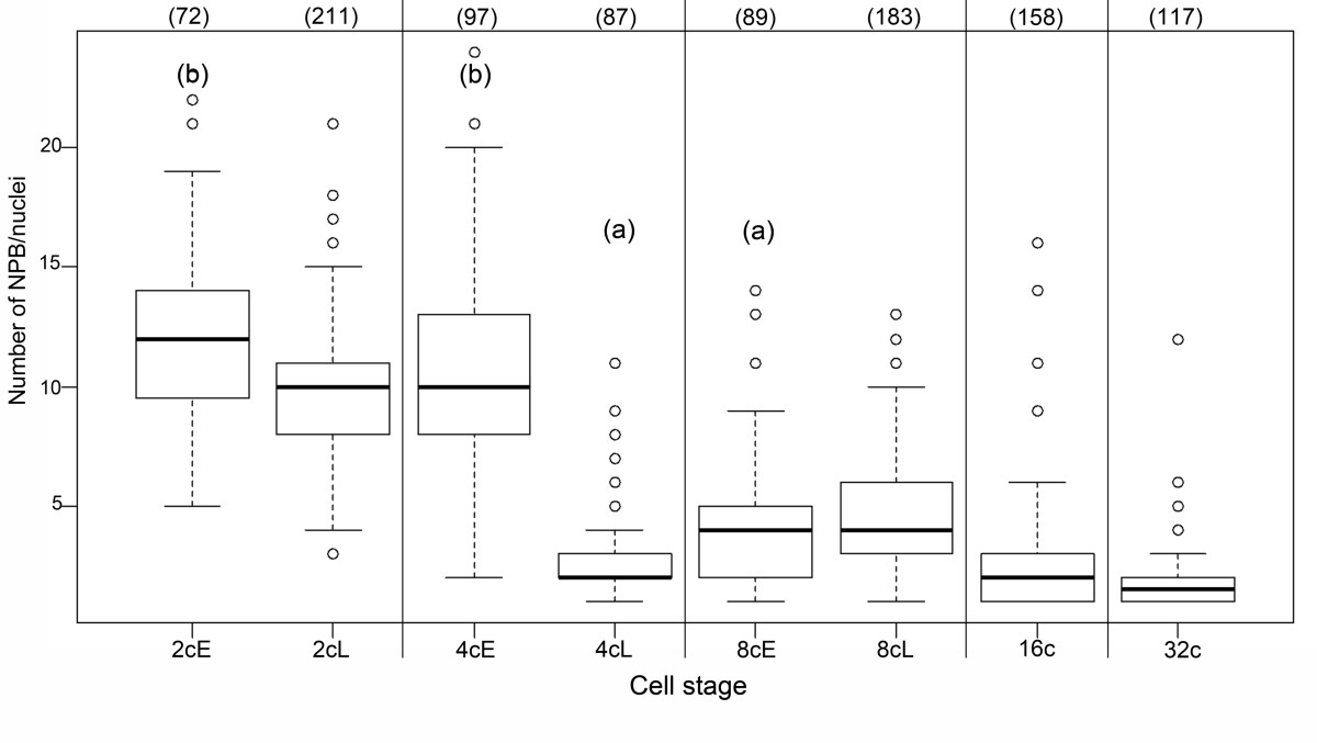 http://static-content.springer.com/image/art%3A10.1186%2F1471-213X-12-30/MediaObjects/12861_2012_Article_704_Fig5_HTML.jpg