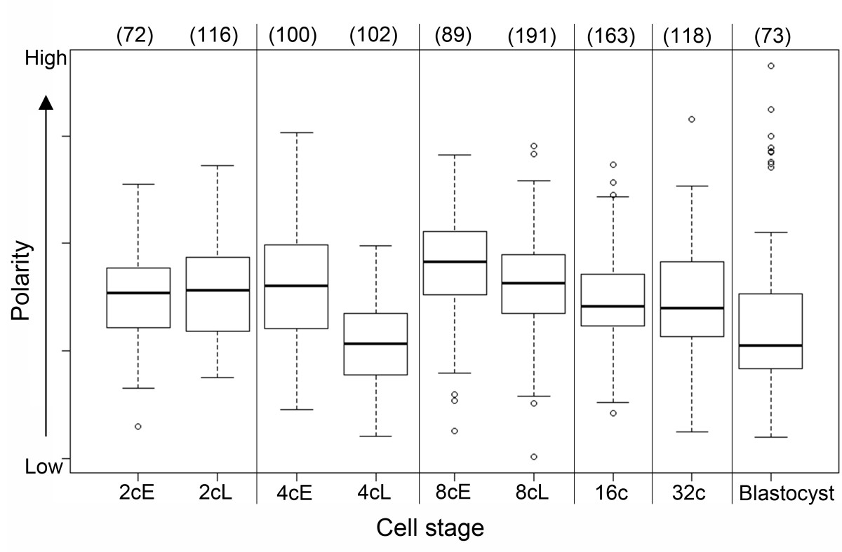 http://static-content.springer.com/image/art%3A10.1186%2F1471-213X-12-30/MediaObjects/12861_2012_Article_704_Fig8_HTML.jpg