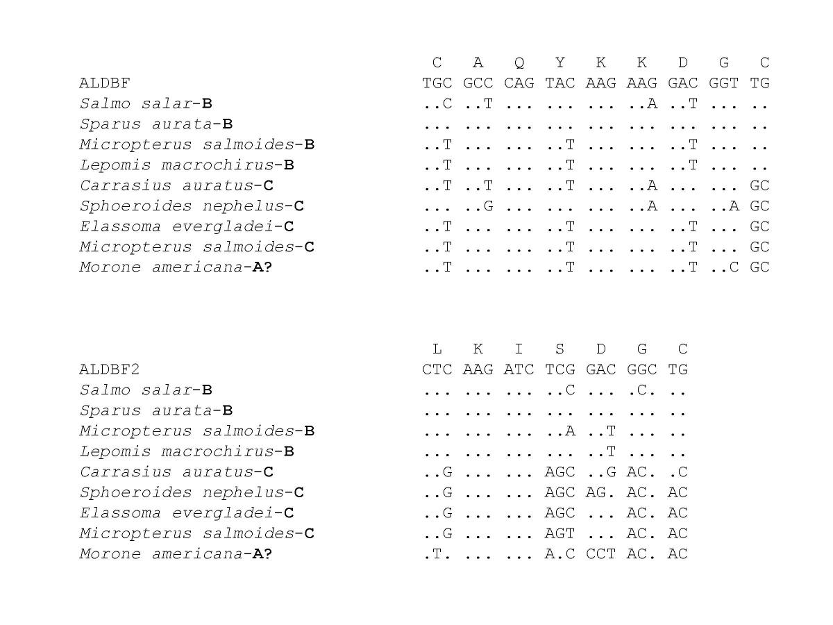 http://static-content.springer.com/image/art%3A10.1186%2F1471-2148-1-9/MediaObjects/12862_2001_Article_9_Fig2_HTML.jpg