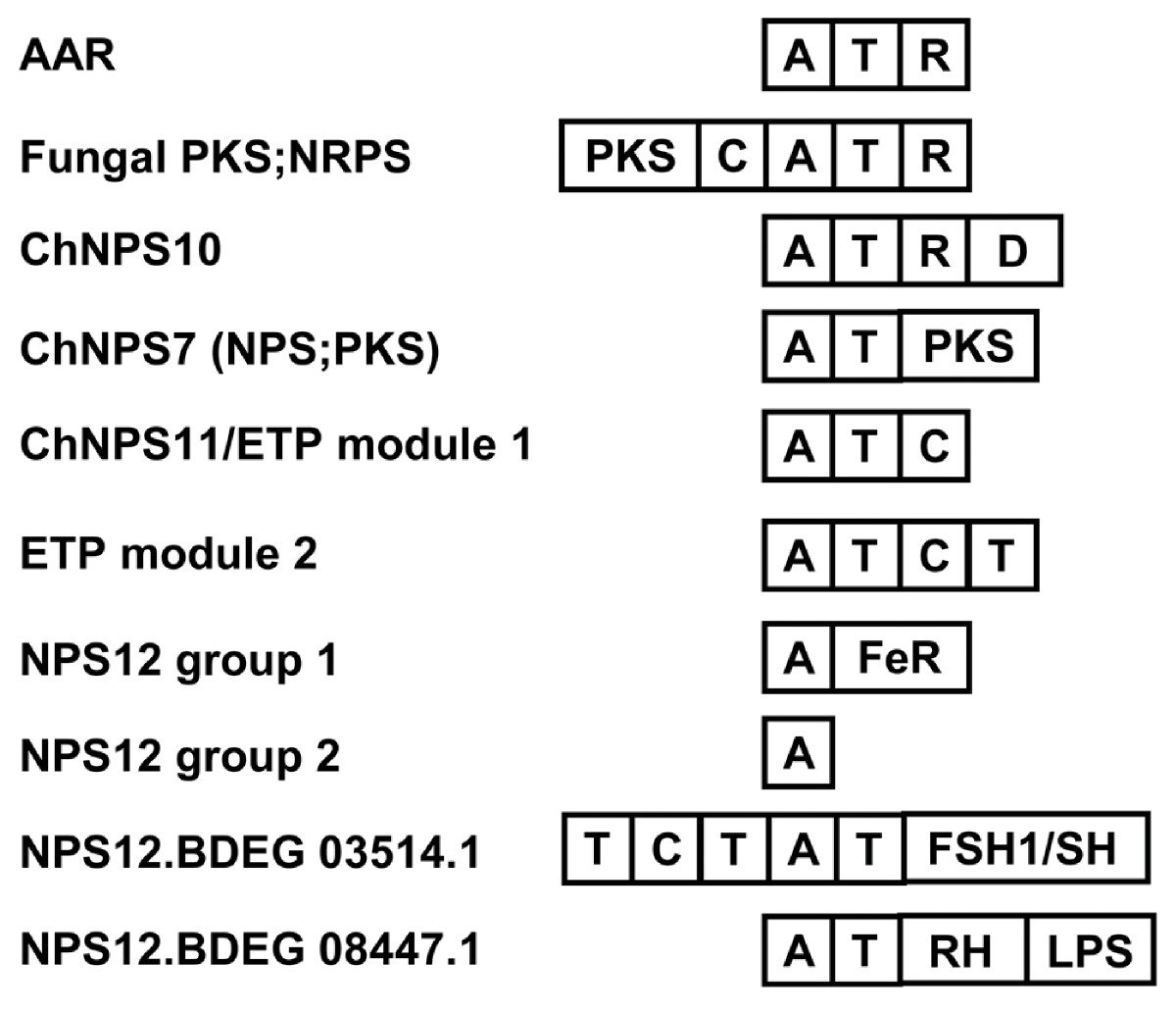 http://static-content.springer.com/image/art%3A10.1186%2F1471-2148-10-26/MediaObjects/12862_2009_Article_1242_Fig5_HTML.jpg