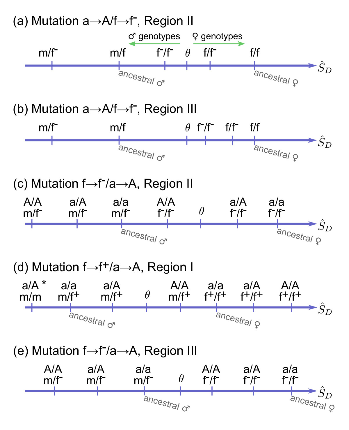http://static-content.springer.com/image/art%3A10.1186%2F1471-2148-10-388/MediaObjects/12862_2010_Article_1603_Fig5_HTML.jpg