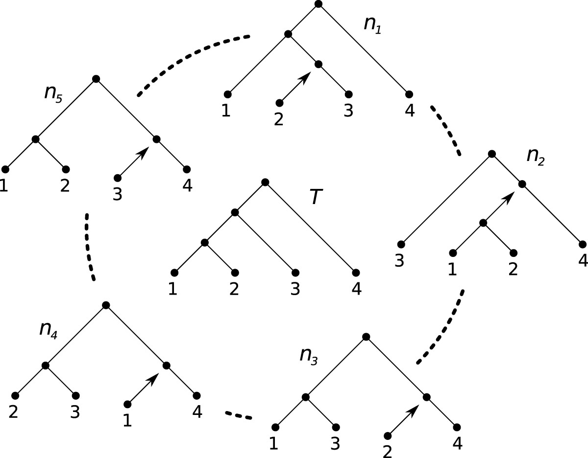 http://static-content.springer.com/image/art%3A10.1186%2F1471-2148-10-42/MediaObjects/12862_2009_Article_1258_Fig1_HTML.jpg