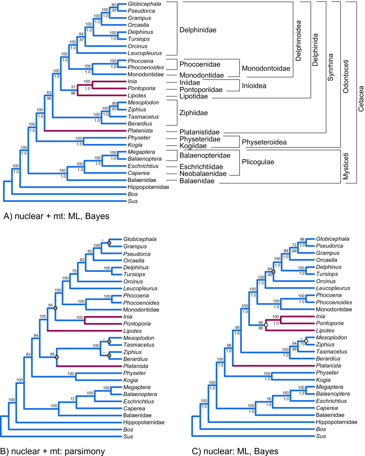 http://static-content.springer.com/image/art%3A10.1186%2F1471-2148-11-112/MediaObjects/12862_2010_1733_Fig4_HTML.jpg