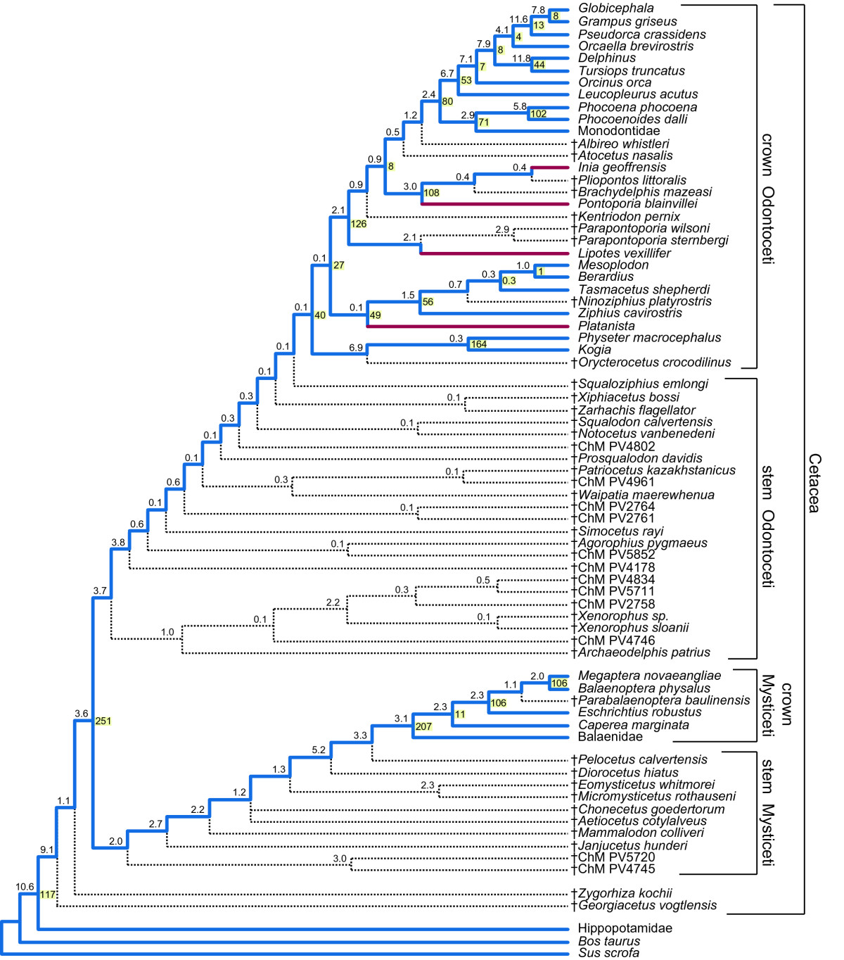 http://static-content.springer.com/image/art%3A10.1186%2F1471-2148-11-112/MediaObjects/12862_2010_1733_Fig5_HTML.jpg