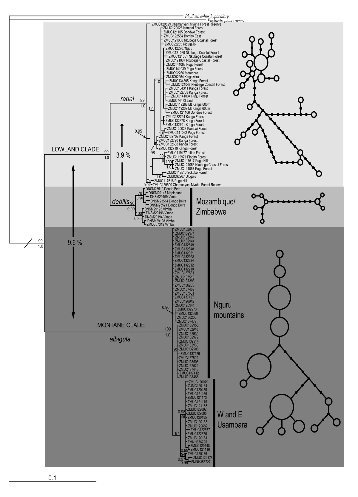 http://static-content.springer.com/image/art%3A10.1186%2F1471-2148-11-117/MediaObjects/12862_2010_1708_Fig2_HTML.jpg