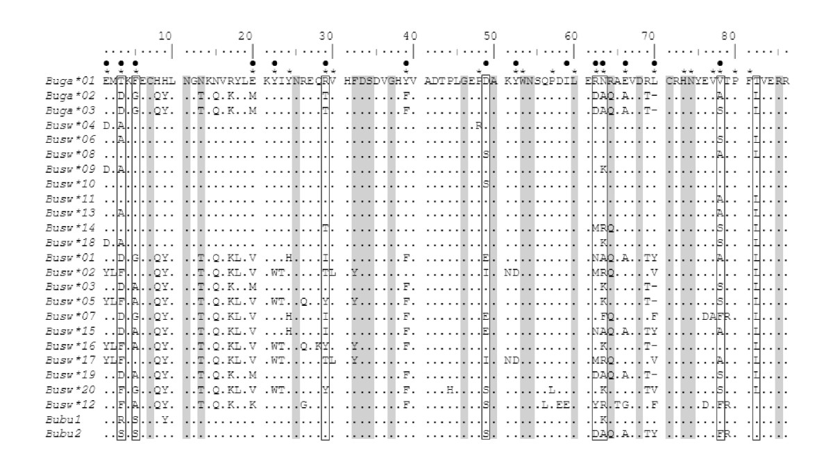 http://static-content.springer.com/image/art%3A10.1186%2F1471-2148-11-143/MediaObjects/12862_2011_1739_Fig2_HTML.jpg