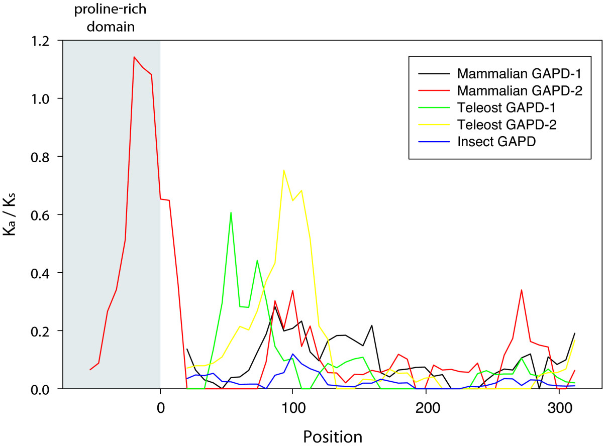 http://static-content.springer.com/image/art%3A10.1186%2F1471-2148-11-160/MediaObjects/12862_2010_1766_Fig5_HTML.jpg