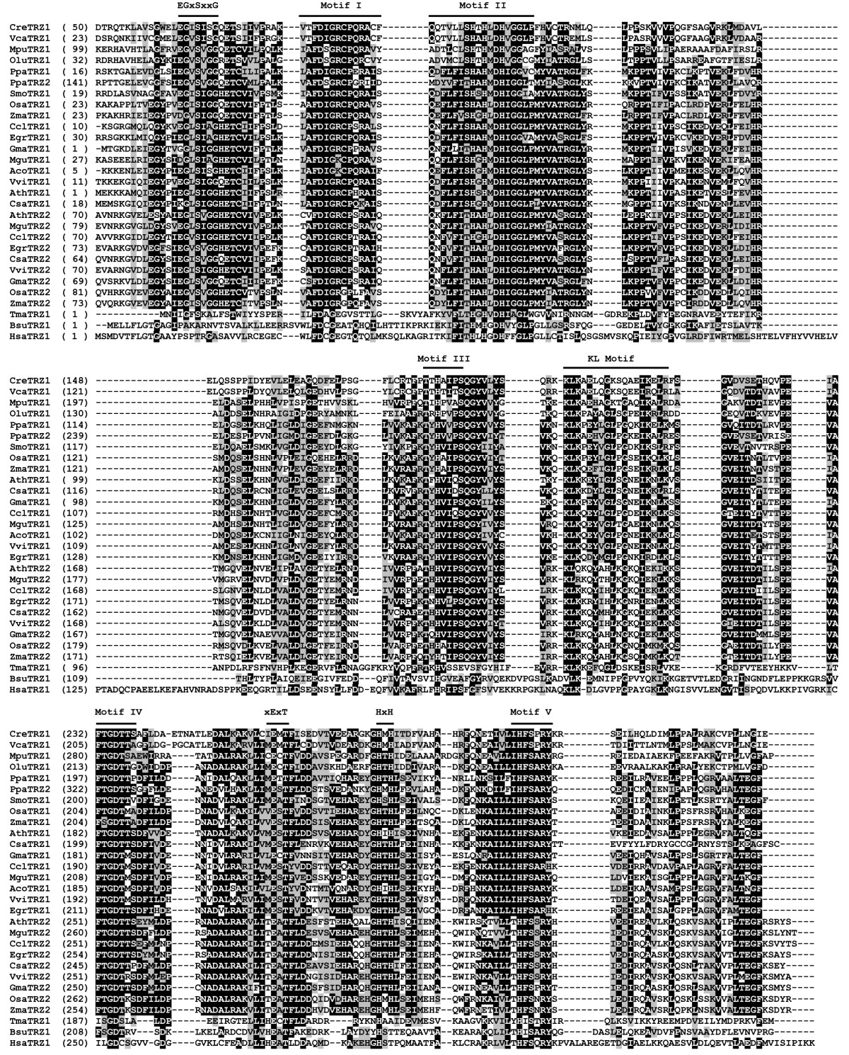 http://static-content.springer.com/image/art%3A10.1186%2F1471-2148-11-219/MediaObjects/12862_2011_1825_Fig3_HTML.jpg