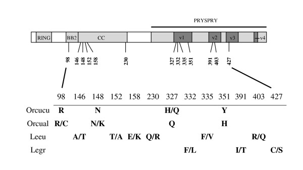http://static-content.springer.com/image/art%3A10.1186%2F1471-2148-11-294/MediaObjects/12862_2011_1902_Fig2_HTML.jpg