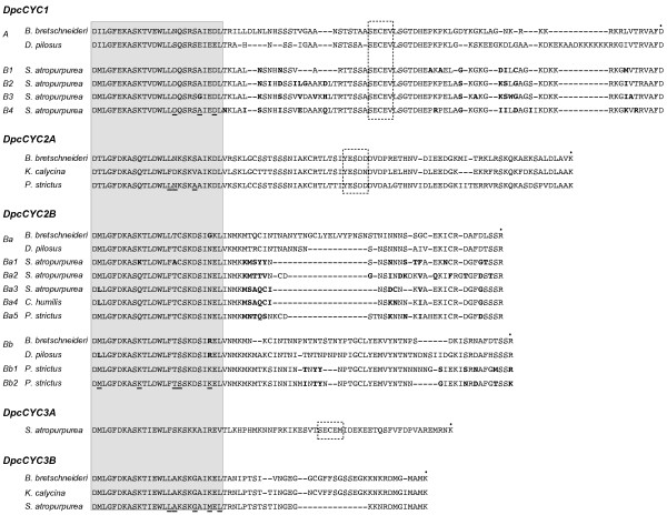 http://static-content.springer.com/image/art%3A10.1186%2F1471-2148-11-325/MediaObjects/12862_2011_1922_Fig5_HTML.jpg