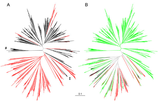 http://static-content.springer.com/image/art%3A10.1186%2F1471-2148-11-348/MediaObjects/12862_2011_1952_Fig4_HTML.jpg