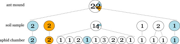 http://static-content.springer.com/image/art%3A10.1186%2F1471-2148-12-106/MediaObjects/12862_2012_2114_Fig3_HTML.jpg