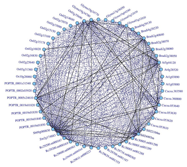 http://static-content.springer.com/image/art%3A10.1186%2F1471-2148-12-15/MediaObjects/12862_2011_1992_Fig1_HTML.jpg