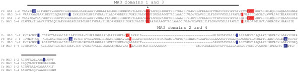 http://static-content.springer.com/image/art%3A10.1186%2F1471-2148-13-199/MediaObjects/12862_2013_2440_Fig4_HTML.jpg