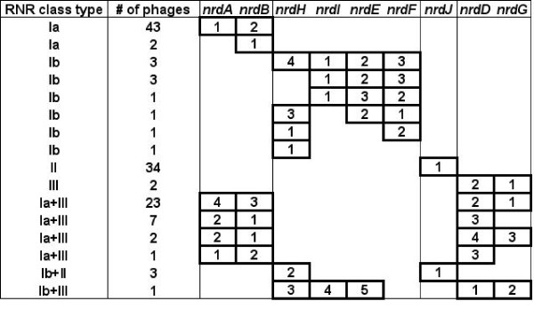 http://static-content.springer.com/image/art%3A10.1186%2F1471-2148-13-33/MediaObjects/12862_2012_2326_Fig3_HTML.jpg