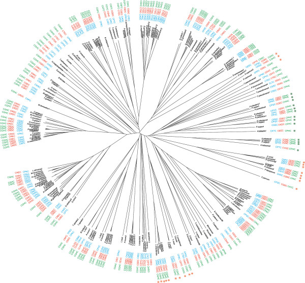 http://static-content.springer.com/image/art%3A10.1186%2F1471-2148-13-70/MediaObjects/12862_2013_2300_Fig4_HTML.jpg